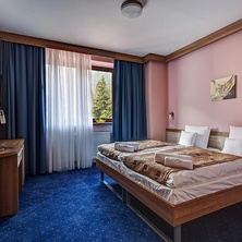 Wellnes hotel Alexandra