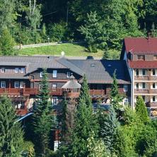 HORSKÝ HOTEL SEPETNÁ