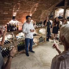 Vinařský pobyt s degustací a prohlídkou Galerie Vín v Penzionu Onyx v Lednice