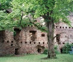 Zřícenina hradu Dalečín