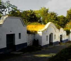 Areál vinných sklepů Petrov-Plže