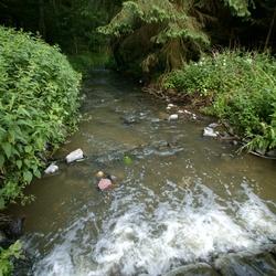 Zahořanský potok