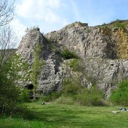 Karlštejn (přírodní rezervace)