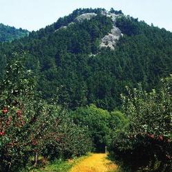 Kuzov (přírodní památka)