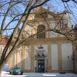 Kostel Nanebevzetí Panny Marie v Plasech