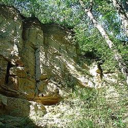 Housle (přírodní památka)
