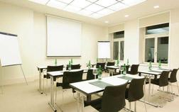 hotel-u-tri-korunek_konferencni-mistnost-ii-1