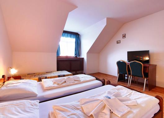 hotel-stara-skola_seminarni-mistnost-5