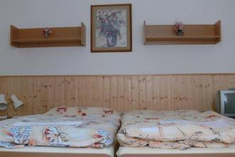 Penzion Pegas Nové Město na Moravě 39937420