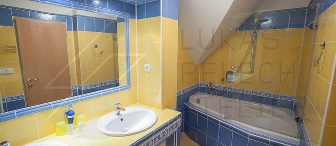 Hotel Mc Limon Šenov u Nového Jičína 1114554042