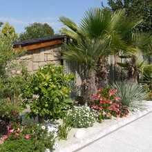 Penzion Pod Hradem Potštejn 1113995782