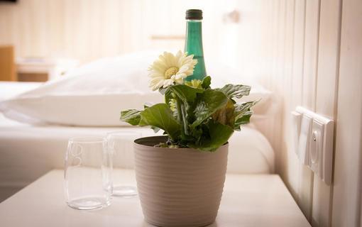 Wellness hotel Bozeňov 1147543415