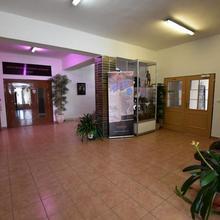 Hotel U Pralesa Benešov nad Černou 37516826