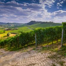Poznejte krásy města Znojma s degustací vín