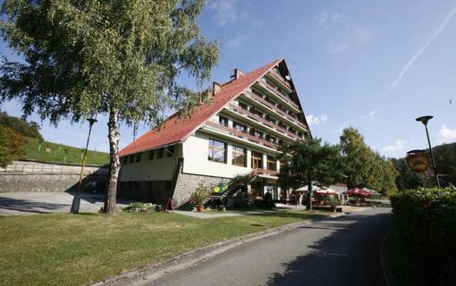 Hotel Rusava 1153847833