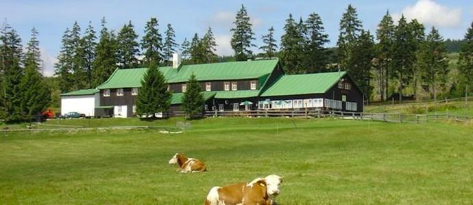 Lesní bouda Černý Důl 1133519119