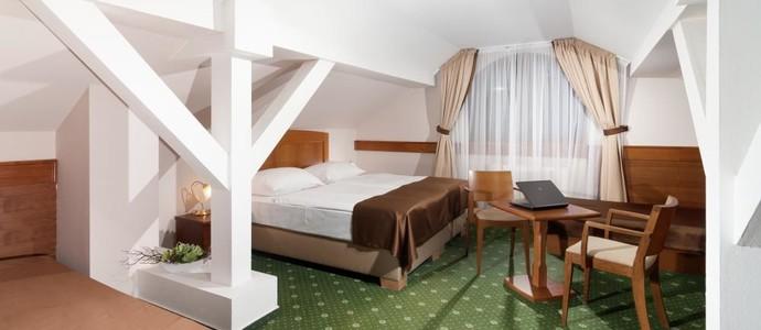 Wellness Hotel Windsor Špindlerův Mlýn 1135124771
