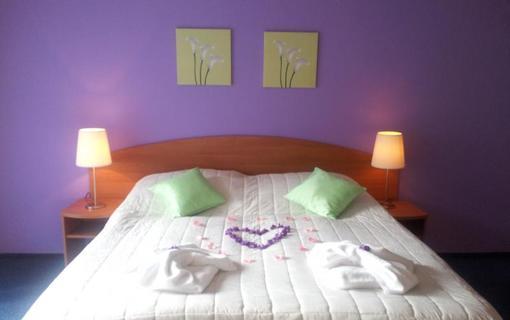 Hotel Centrum Harrachov 1153848411