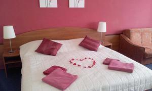 Hotel Centrum Harrachov 1153848385