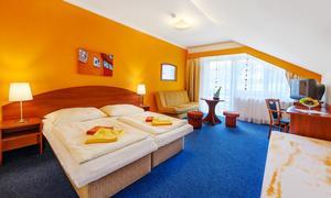 Hotel Centrum Harrachov 1153848389