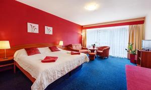 Hotel Centrum Harrachov pokoj comfort 19