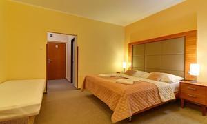 Hotel Centrum Harrachov 1153848403
