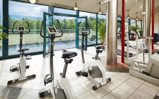 Spa Resort Libverda - Hotel Panorama 1154316741