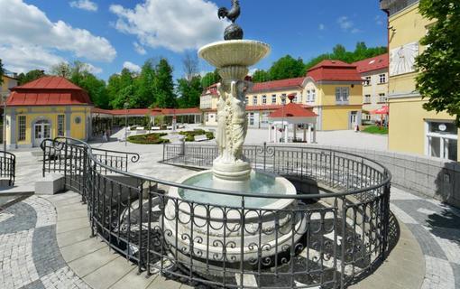 Spa Resort Libverda - Hotel Panorama 1154316795