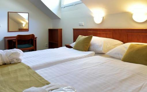 Spa Resort Libverda - Hotel Panorama 1154316685