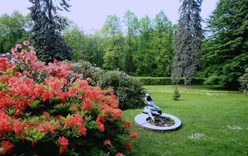 Spa Resort Libverda - Hotel Panorama 1154316767