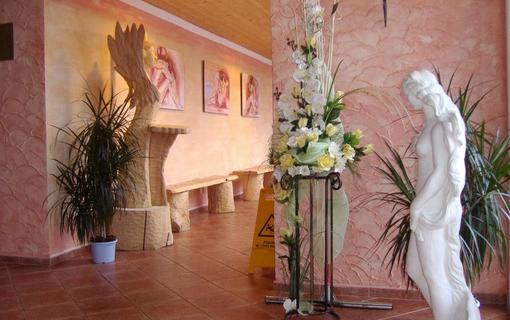 Wellness Hotel BAHENEC 1149258653