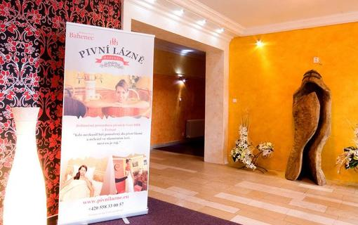 Wellness Hotel BAHENEC 1149258647