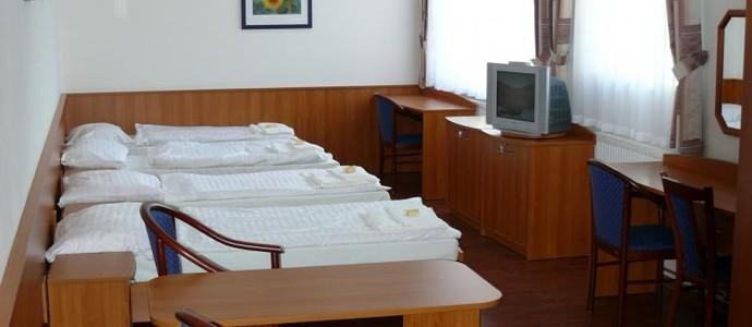 Hotel Přibyslav 1133543869