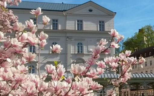 Krátká relaxace v Karlových Varech-Lázeňský hotel Sadový Pramen 1156993571