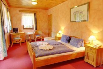Hotel Martin a Hotel Kristýna Špindlerův Mlýn 45536198