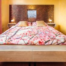 Hotel Conti Olomouc 48413366