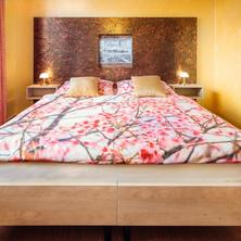Hotel Conti Olomouc 38159990