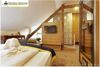 Penzion Vanessa Brno 40725152