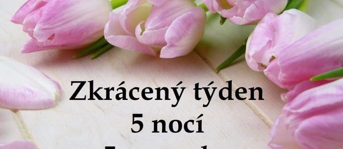 Penzion Alfa Poděbrady-pobyt-Zkrácený týden (5 nocí, 5 procedur)