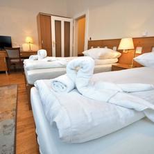 Hotel Pod Zeleným dubem Bohumín 33433300