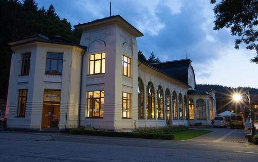 Lázeňský hotel Terra 1156738959