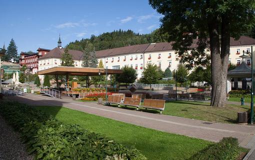 Lázeňský hotel Terra 1156738979