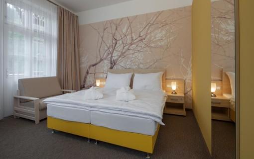 Silvestrovský pobyt se státním příspěvkem 6+1 noc zdarma-Lázeňský hotel Terra 1153852589