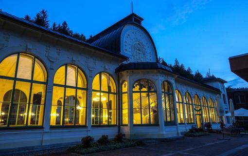 Lázeňský hotel Terra 1156738961