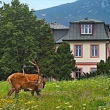 Apartmány Stará Morava Vysoké Tatry 33435128