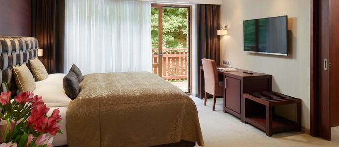 Hotel Singer Ludvíkov 1133565653