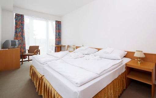 Akční pobyt se zlatou masáží na 2 noci -Hotel Medlov 1156370519