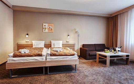 Wellnes hotel Alexandra 1142955797
