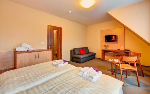 Hotel Toč 1155396433