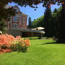 Wellness & Spa hotel Villa Regenhart Jeseník 39369742
